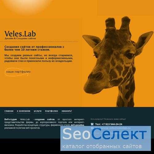 Создание и продвижение сайтов - http://www.veleslab.ru/