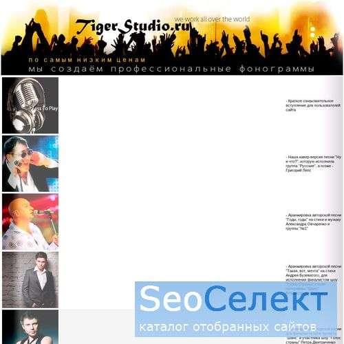 Минусовки, студия - заказывайте у нас! - http://tigerstudio.ru/
