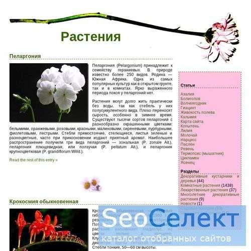 Poison-Flora.Net - читайте статьи про гиацинт, коп - http://poison-flora.net/