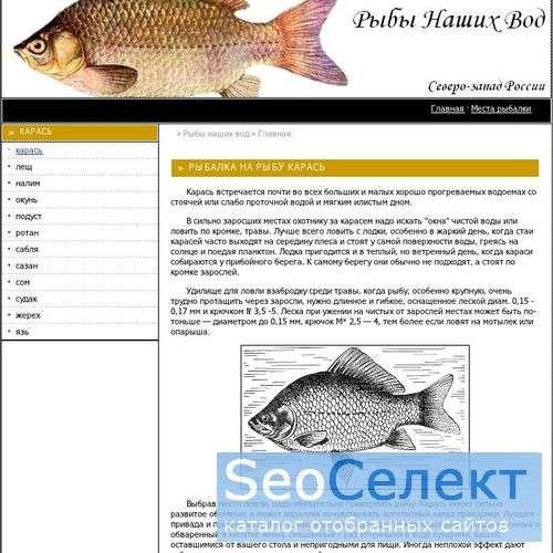 Речные и озерные рыбы России - http://carassio.spb.ru/