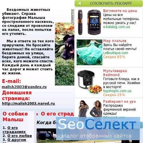 Сайт о собаке по кличке Малыш - http://malish2003.narod.ru/