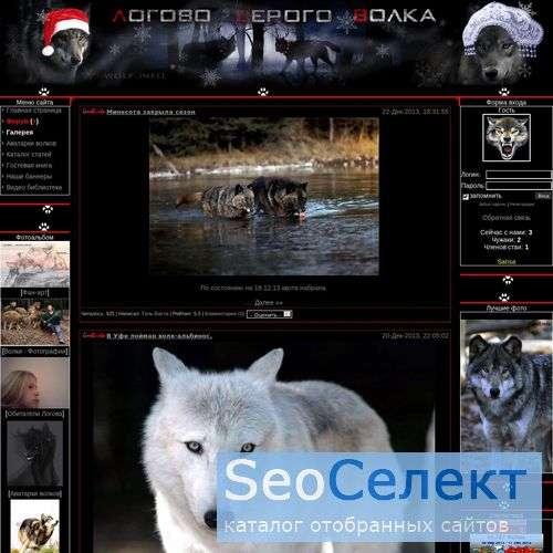 Волки, Сайт посвященный волкам! - http://wolfclan.ucoz.ru/